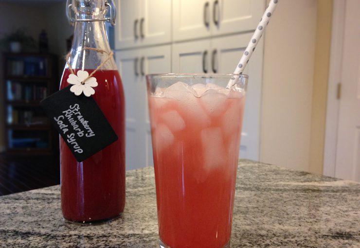 Rhubarb Soda Recipe — Dishmaps